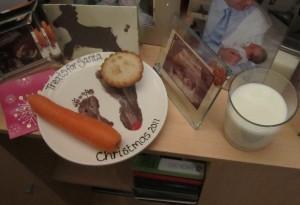 treats for santa2