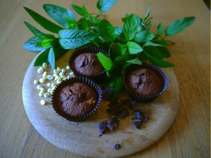 mint choc chip cakes 2